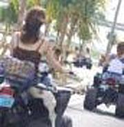 ヘルメットをかぶる必要なし!