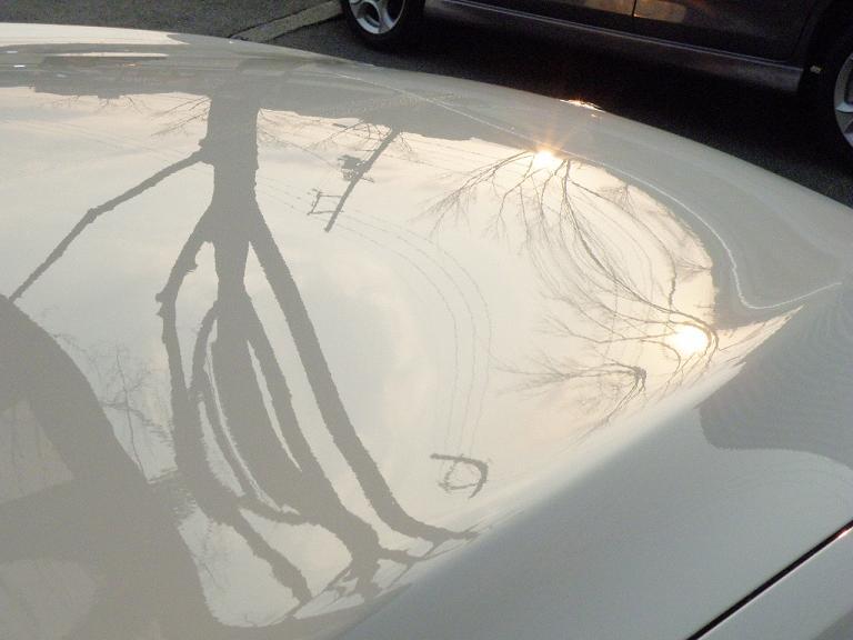 ガラスコーティング BMW ボンネット施工後